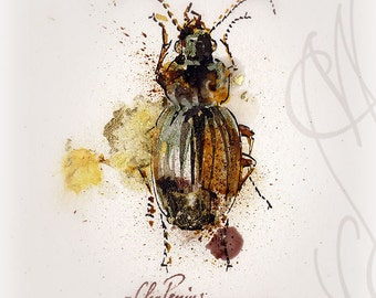 "Martinefa's Original watercolor and Ink - "" Insect #6"""