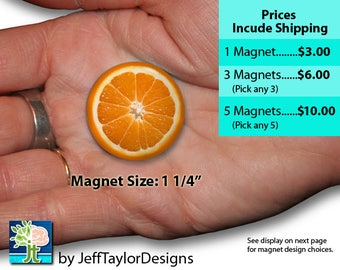"""Small 1 1/4"""" Fruit Slice Magnets"""