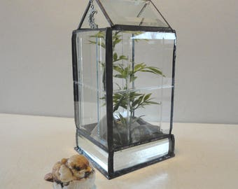 Modern Glass Terrarium, Beveled Reclaimed Glass, Planter, Home Decor, Display Case, Garden, Diorama, Case,  Atrium, Conservatory, Greenhouse