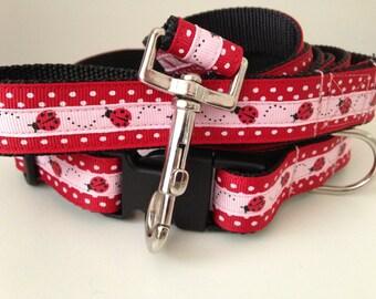 Lady Bug and Polka Dots Leash and Collar Set