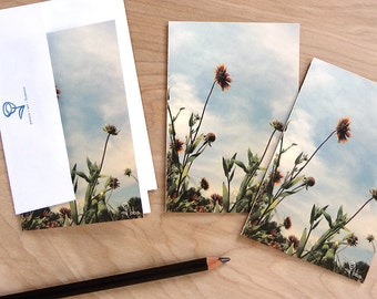 nature photography cards, wild flowers notecard set, botanical stationery, blank cards and envelopes