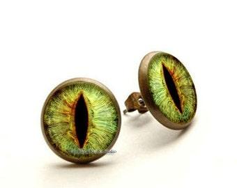 Green Cats Eye Earrings, Green Eye Jewelry, Cat's Eye stud,  Hypoallergenic Earrings for Sensitive Ears