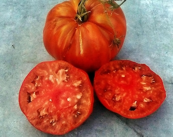 Chico's Big Black Paste Tomato Heirloom Garden Seed  Naturally Grown Open Pollinated 30+ seeds ***New for 2018*** Gardening