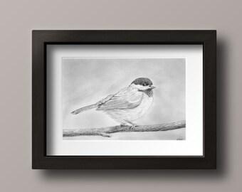 Chickadee Print - Chickadee Art - Chickadee Decor - Chickadee Bird - Chickadee Wall Decor - Black Capped Chickadee - Chickadee - Bird Print