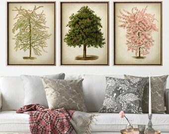 Botanical print set of 3, lovely Flowery tree print set, flowering trees illustration, botanical poster, botanical wall decor