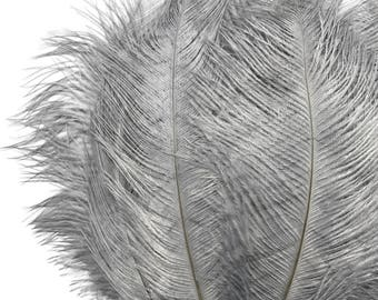 """Ostrich Feathers, 10 Pieces - 6-8"""" Grey Ostrich Dyed Drabs Body Feathers : 1369"""