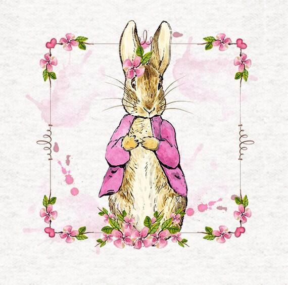Peter Rabbits Sister Flopsy In Her Pink Coat Floral Border