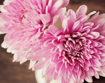rustic home decor, large living room art, flower photography, pink home decor, still life art, chrysanthemums, pink mums, bedroom art