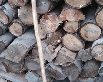 Hand carved oak walking stick