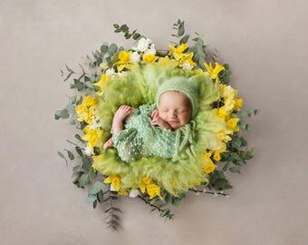 Digital Backdrop for newborns - Daffodils / Green Nest/ Instant download