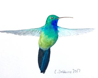 hummingbird art bird art Original Watercolor Painting Hummingbird Watercolor Broad-billed Hummingbird Bird Painting Hummingbird Lover
