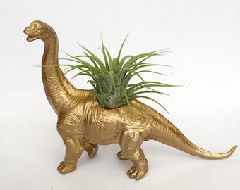 Gold Diplodocus Dinosaur Planter with Air plant // Dino Planter // housewarming present