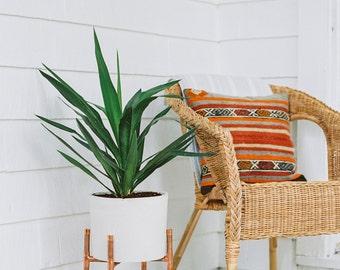 Copper and Concrete Planter | Modern Plant Stand | Planter | Cement Pot | Indoor Plant Stand | Indoor Plants
