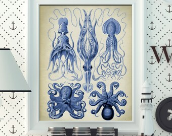 Blue octopus poster, squid print, cuttlefish wall decor, marine biology study, beach home decor, wall decor, room decor