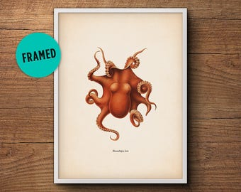 Octopus Print, Framed Art, Octopus Art, Octopus Wall Art, Octopus Poster, Octopus Decor, Bathroom Decor, Nautical Print, Wall Art