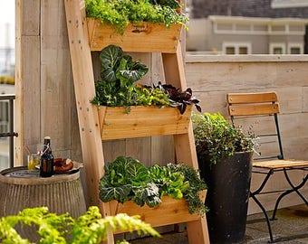 Vertical Planter , Leaning planter, vertical garden, succulent planter ,wall ,flower planter , ladder , Farmer D