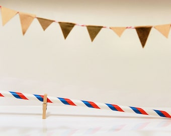 Striped Paper Straws (Pack of 24)