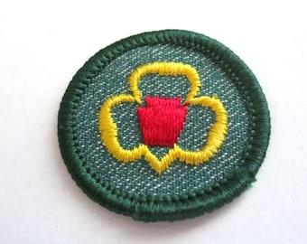 """Vintage Intermediate Girl Scout Badge """"My Troop"""" circa 1950's"""