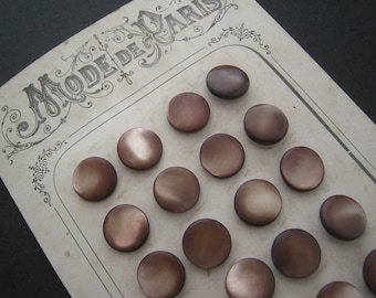 X 24 Antique french bronze natural shell collectible buttons - Mode de Paris on card