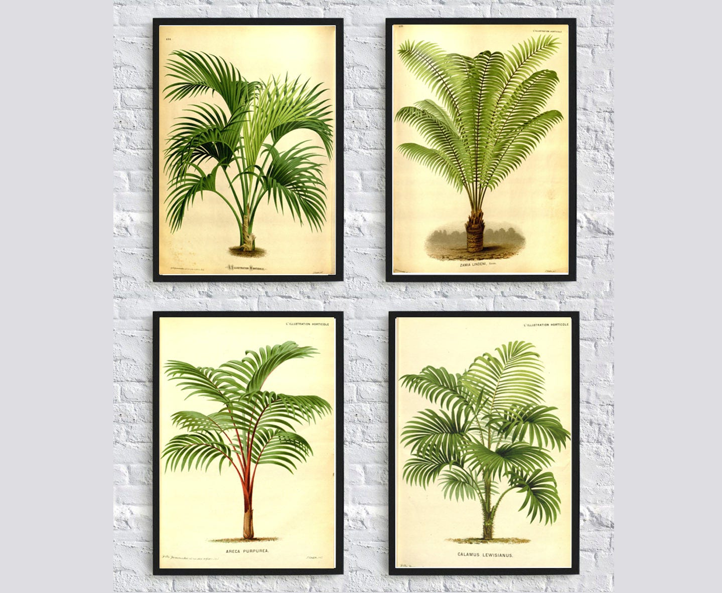 Luxury Leaf Wall Art Decor Component - The Wall Art Decorations ...