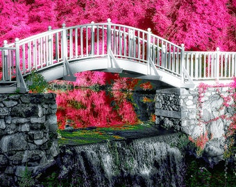 Your choice of 5 note cards -- Infrared Landscapes
