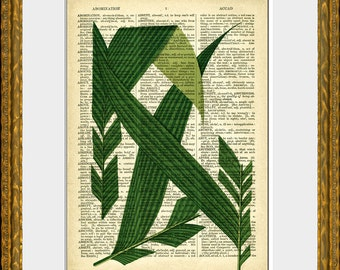 PALM TREE FRONDS 1 recycled book page art print - an upcycled antique dictionary page with a retooled antique tree illustration - wall art