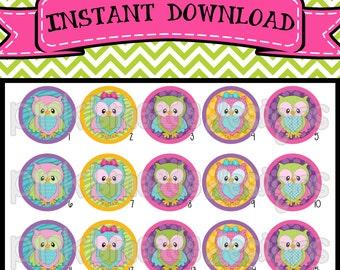 "Funky Owls - INSTANT DOWNLOAD 1"" Bottle Cap Images 4x6 - 422"