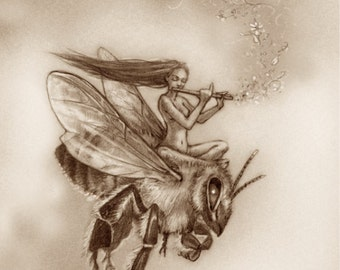 Bee Rider by Renae Taylor