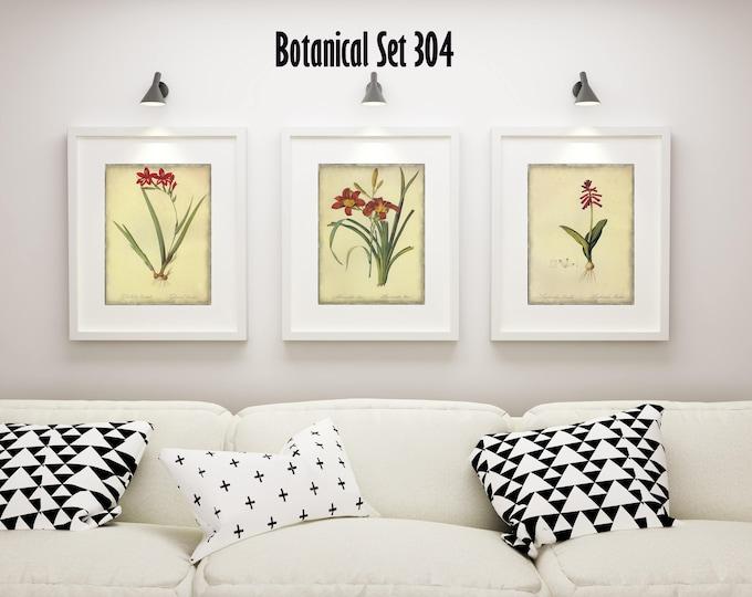 Set of 3 Botanical Prints - Red Floral Prints - Set of 3 Framed Prints - Housewarming Gift - Bedroom Decor - Modern Farmhouse Wall Art
