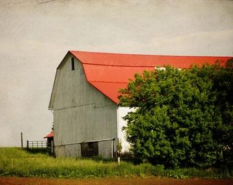 White Barn Photo, Rustic Farm Photography, Fixer Upper Farmhouse Style Picture, Neutral Country Decor, Landscape, Home Decor Wall Art