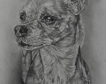 Custom Portraits! Pet / Animal Portrait Art