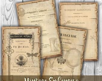 Vintage Ephemera Digital Collage Sheet Download - Digital Paper - Instant Download Printables