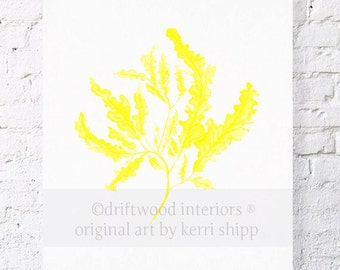 Seaweed in Marigold Print 11x14 - Sea Coral Wall Art - Seaweed Art Print