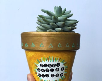 Plant Serial Killer, Witty, Hand Painted, Terra Cotta, Succulent, Succulent Planter, Plant Pot
