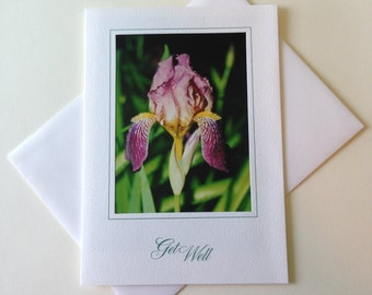 After the Rain Photo Note Card Blank Inside Get Well