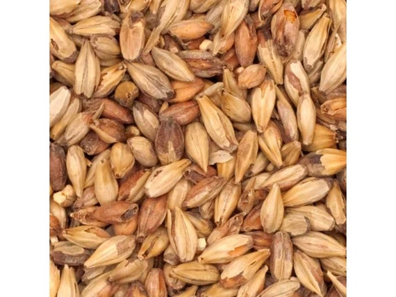 All Natural Raw Briess SPECIAL ROAST Brewers Malted Grain For Home Beer Brewing 1 Pound