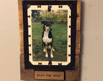 Best Dog Ever, Dog Picture Frame, picture frame for dog, personalized dog frame, dog mom gift, Gift for dog owner, Dog owner gift, dog frame