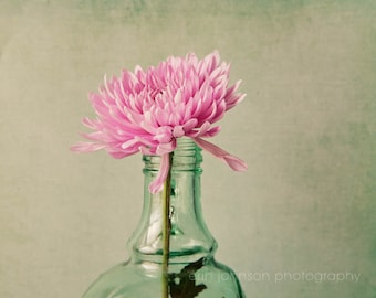 large kitchen art, flower photography, rustic home decor, pink home decor, still life art, chrysanthemums, pink mums, green home decor