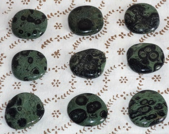 Beautiful Kambaba Jasper Flat Crocodile Stone Crystal Gemstone Pebble Polished