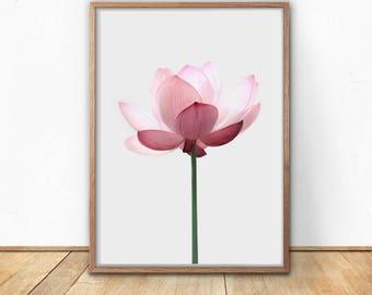 Lotus Print, Digital Download, Modern Flower Art, Scandinavian Poster, Pink  Flower,