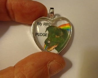 Rainbow Bridge Pet Memorial Heart Necklace