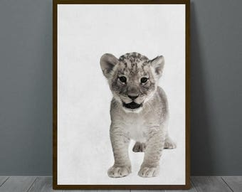 Baby Lion Nursery Print, Baby Lion Wall Decor, Baby Lion Poster, Baby Lion, Lion, Animal Print Wall Decor, Baby Lion Wall Art,