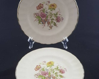 Set of 2 Sovereign Potter Earthenware Dessert Plates