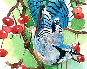 Jay and berry, ACEO limited EDITION (1/25) of an ACEO original watercolor painting, bird art print, bluejay miniature watercolor painting