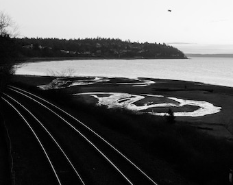 Birds and Trains -  Photography Print