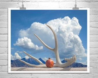 Surreal Art, Fine Art Photography, Southwestern Art, Still Life Art, Southwest Decor, Pomegranate Art, Sky and Clouds Art, Tucson Gift