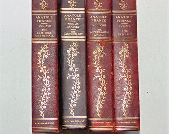 1800's Handsome Antique Red Leather Books