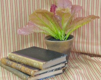 Waverly Pink, Green and Taupe Stripe Fabric
