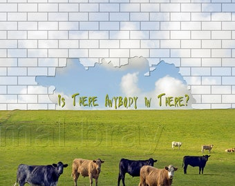 Pink Floyd, Album Cover, spoof, print, poster