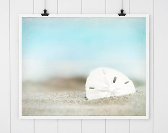 sand dollar art, sand dollar wall art, beach print, seashell art, beach cottage decor, beach photography, blue beach house decor
